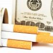 Filters of cigarettes close up cigarettes and Dolar - Stock Photo