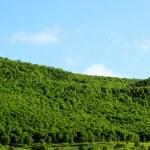 Beautiful in armenia mountains — Stock Photo #10980121