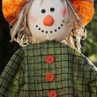 Scarecrow in the garden - Stock fotografie