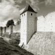 Stock Photo: Walls, Provins, Ille de France, France