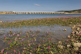 Ebro reservoir, Burgos, Castilla y Leon, Spain — Stock Photo