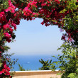 Stock Photo: Arch of red bougainvillea