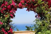 Arch of red bougainvillea — Stock Photo