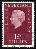 Queen Juliana — Stock Photo