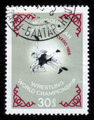 Wrestling World Championship in Toledo — Stock Photo