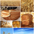 Royalty-Free Stock Photo: Collage of traditional bread, wheat and cereal