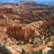 Bryce Canyon National Park, Utah, USA — Stock Photo