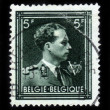 Постер, плакат: Leopold III reigned as King of the Belgians
