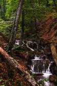 Wataerfall in forest, Crimea, Ukraine — Stock Photo