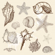 Sea collection. Hand drawn vector illustration — Stock Vector #11369705