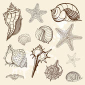 Sea collection. Hand drawn vector illustration — Stock Vector