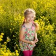 Stock Photo: Funny little girl among yellow wildflowers