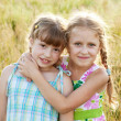 Two pretty funny girl with pigtails — Stock Photo