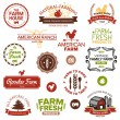 Vintage and modern farm labels — Image vectorielle