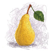 Fresh pear fruit — Stock Vector