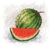 Fresh watermelon fruit — Stock Vector