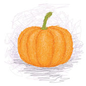 Pumpkin vegetable — Stock Vector