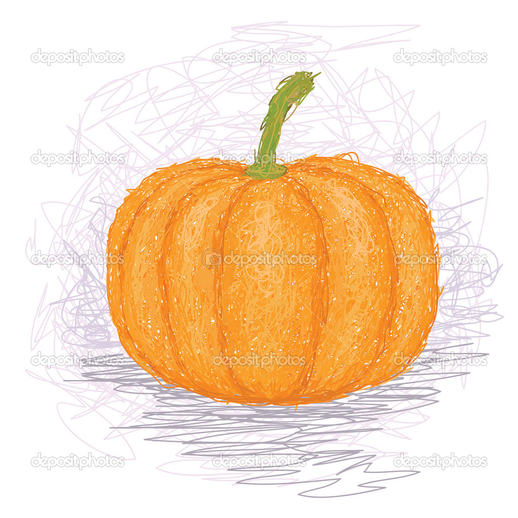 Closeup illustration of a ripe pumpkin vegetable. — Stock Vector #11902085