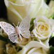 Rose & Butterfly — Stock Photo