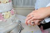 Bride & Groom cut cake — Stock Photo