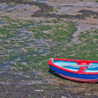 Stock Photo: Brightly coloured dinghy