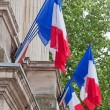 French National Flags — Stock Photo #11862720