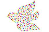Colomba colorato — Foto Stock