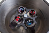 Centrifuge with blood samples — Stock Photo