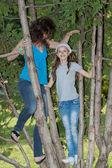 幸福的家庭,一棵树上 — 图库照片