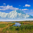 Stock Photo: Majestic mountains beyond prairies