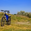 Stock Photo: Touristic bicycle in steppe