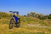 Touristic bicycle in a steppe — Stock Photo