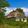 Stock Photo: Small rural house