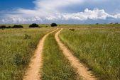 Грунтовая дорога в степи — Стоковое фото