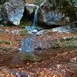 Small autumn brook in a mountains — Stock Photo