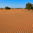 Evening sand desert - Stock Photo