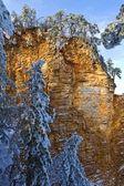 冬のロッキー山脈 — ストック写真