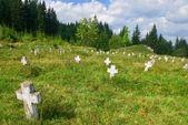 Stary cmentarz w lesie — Zdjęcie stockowe