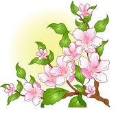 Blossoming branch — Stockvektor