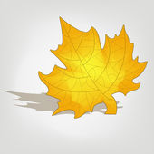 Yellow Maple Leaf on a gray background — Stock Vector