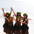 Stock Photo: Hawaiian Hula Dancers on Maui