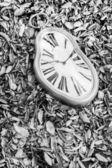 タイム ワープ — ストック写真