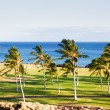 Golf Course in Paradise - Stock Photo
