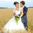 Wedding - Foto Stock