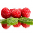 Still life raspberry — Stock Photo