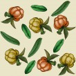 Seamless texture with berries and leaves. - Stockvectorbeeld
