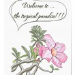 Vector de stock : Vector card with tropical flower