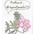 carte de vecteur avec fleur tropicale — Vecteur