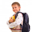Portrait of male elementary pupil on white — Stock Photo #10816328