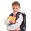 Portrait of male elementary pupil on white — Stock Photo